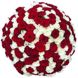 Букет микс роз Эквадор 151 штука 60 см