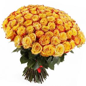Букет желтых роз Эквадор 101 штука 60 см