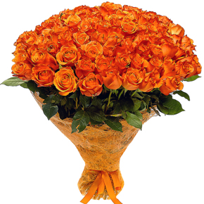 Букет желтых роз Эквадор 101 штука 70 см