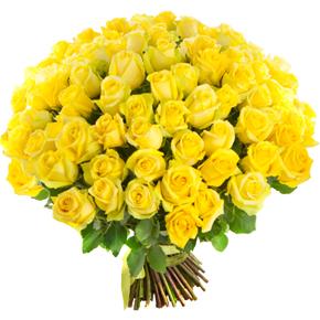 Букет желтых роз Эквадор 151 штука 50 см