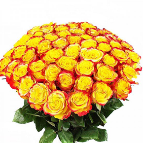 Букет желтых роз Эквадор 25 штук 40 см