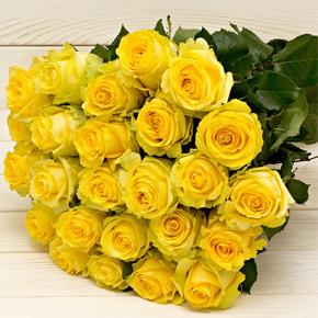 Букет желтых роз Эквадор 25 штук 70 см