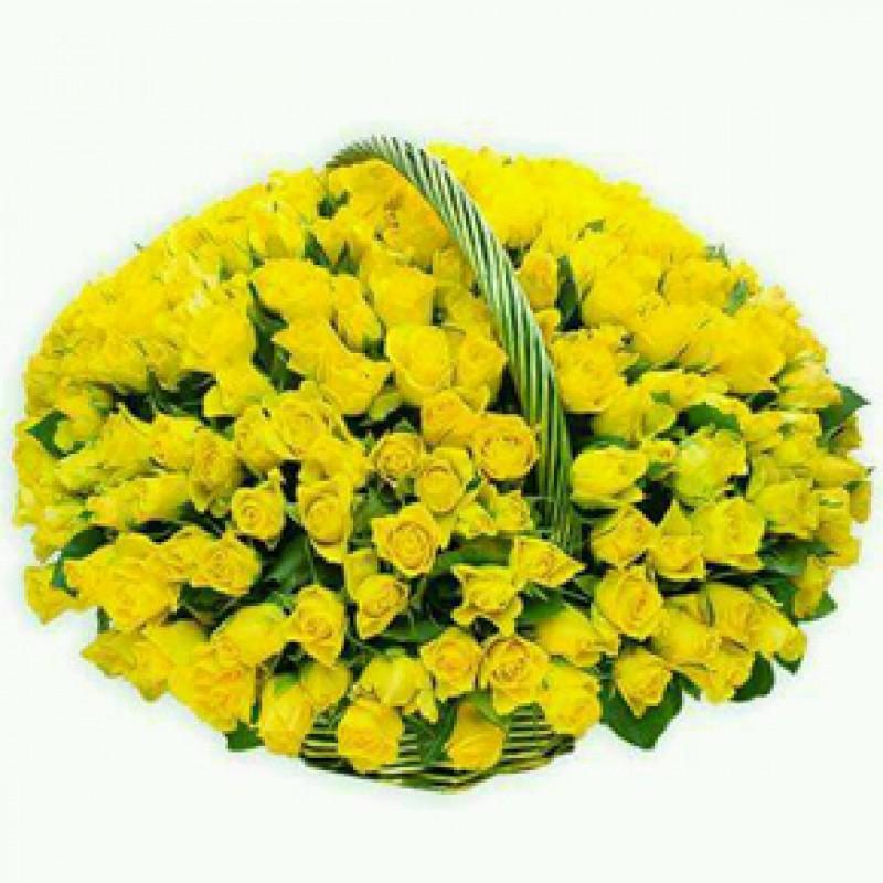 Букет желтых роз Эквадор 301 штука 60 см
