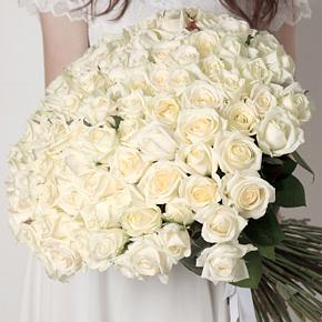 Букет белых роз Эквадор 101 штука 40 см