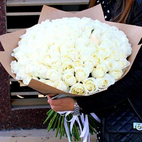 Букет белых роз Эквадор 101 штука 60 см