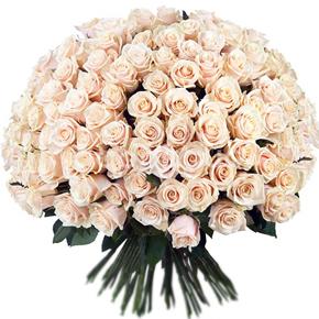 Букет белых роз Эквадор 151 штука 70 см