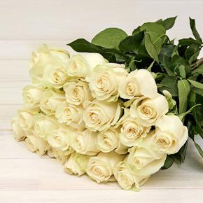 Букет из 25 белых роз 100 см