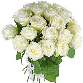 Букет из 25 белых роз 70 см