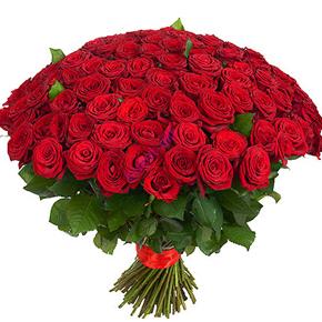 Букет красных роз Эквадор 151 штука 80 см