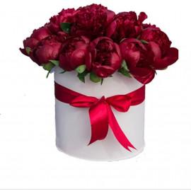 Красные пионы в шляпной коробке 19 штук