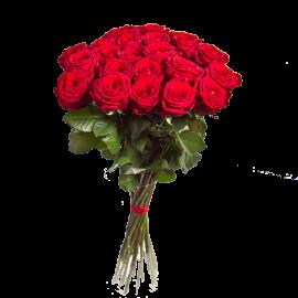 Букет красных роз Эквадор 25 штук 50 см