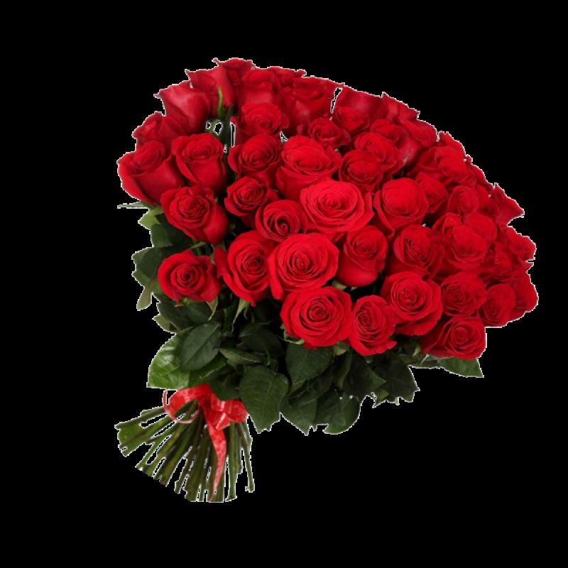 Букет красных роз Эквадор 25 штук 70 см