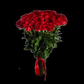 Букет красных роз Эквадор 51 штука 90 см