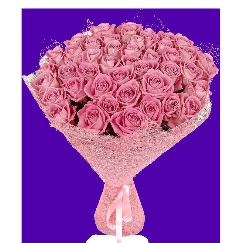Букет розовых роз Эквадор 51 штука 60 см