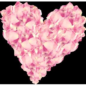 Лепестки розовых роз 1 литр