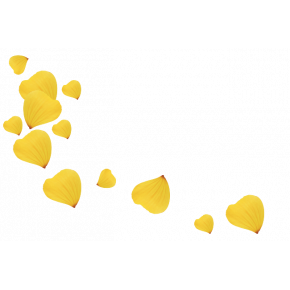 Лепестки желтых роз 1 литр