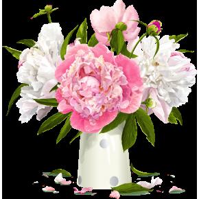 Розовые пионы 1 штука
