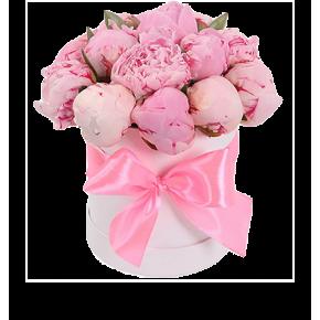 Розовые пионы в шляпной коробке 19 штук