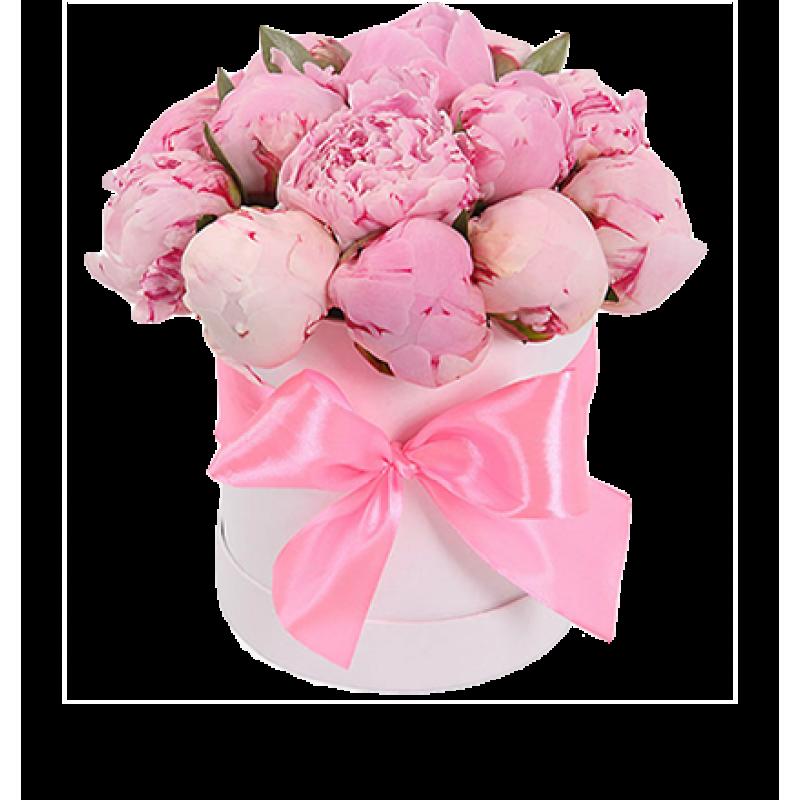Розовые пионы в шляпной коробке 25 штук