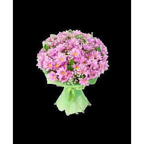 Хризантемы розовые 25 штук