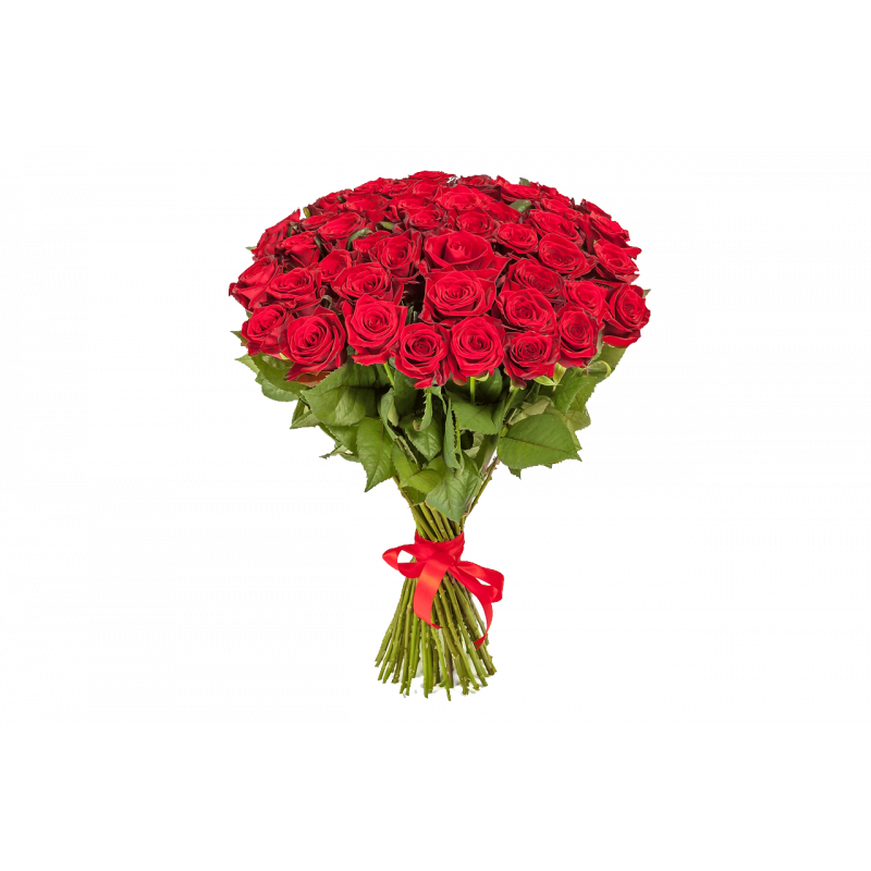 Букет из 25 красных роз Эквадор 100 см